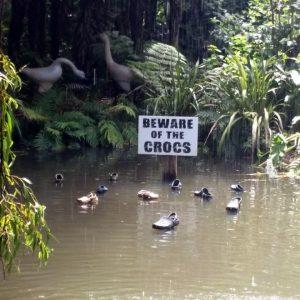 angry-crocs