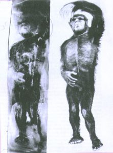 minnesota-iceman