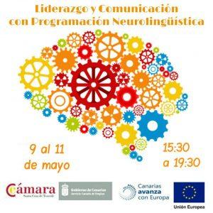 Curso Liderazgo y Comunicación con Programación Neurolingüística (PNL).