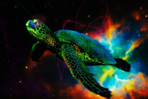 Sueños de una tortuga cósmica
