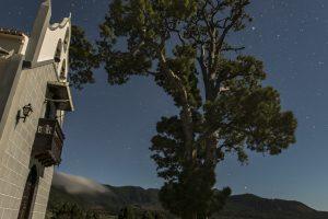 Pino de la Virgen en El Paso. La estrella Canopo se aprecia en la parte inferior derecha sobre Cumbre Vieja