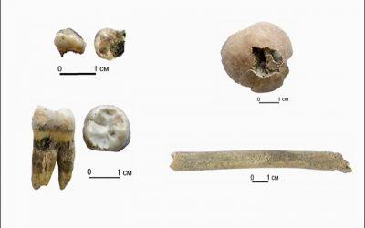 Denisovanos, nuevos hallazgos, mayor antigüedad