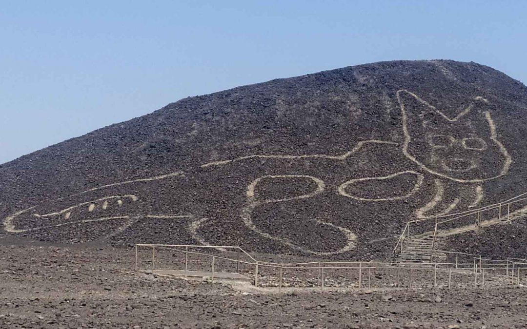 CSB12-7 Nazca y sus geoglifos en peligro; el lado positivo de las emociones negativas; OVNIs, una visión unificadora; medicina vibracional